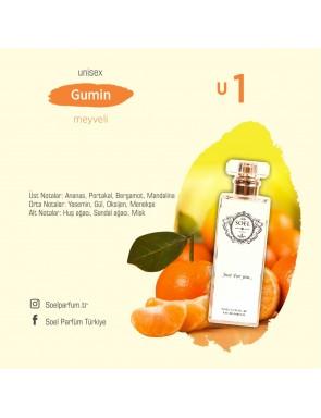 SOEL U1 Unisex Parfüm 50ml EDP