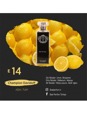 SOEL E14 Erkek Parfüm 50ml EDP